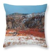 Winter Colors 2 Throw Pillow