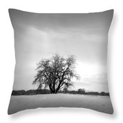 Winter Cottonwood 2 Throw Pillow