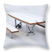 Winter Cover Throw Pillow