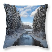 Winter Creek Throw Pillow by Fran Riley