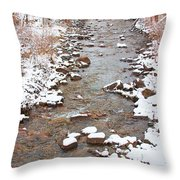 Winter Creek Scenic View Throw Pillow