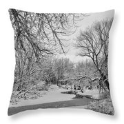 Winter Creek In Black And White Throw Pillow