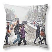 Winter Crossing Throw Pillow