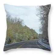 Winter Cruise Throw Pillow