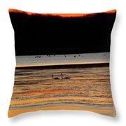 Winter Dawn Swans Throw Pillow