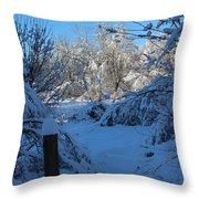 Winter Day II Throw Pillow