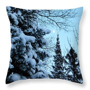 Winter Day Throw Pillow