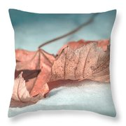 Winter Decay 4 Throw Pillow