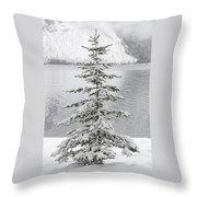 Winter Decor Throw Pillow