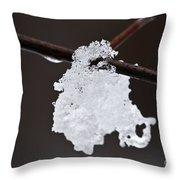 Winter Detail Throw Pillow by Elena Elisseeva
