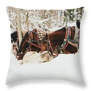 Horses Eating In Snow Throw Pillow