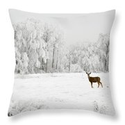 Winter Doe Throw Pillow by Mary Jo Allen