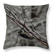 Winter Downy Throw Pillow