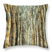 Winter Dreams Throw Pillow