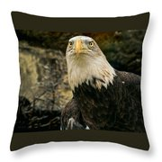 Winter Eagle Throw Pillow