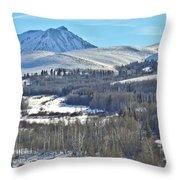 Winter Evening Aspen Throw Pillow