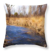 Winter Fade Throw Pillow