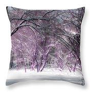 Winter Faeries Throw Pillow
