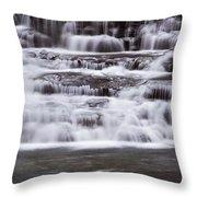 Winter Fall Throw Pillow