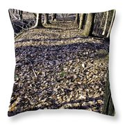 Winter Fall On The Trail Throw Pillow