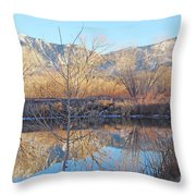 Winter Feb 2015 Colorado Throw Pillow