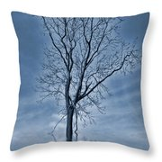 Winter Floods Throw Pillow