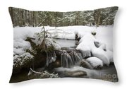 Winter Forest - Lincoln New Hampshire Usa Throw Pillow