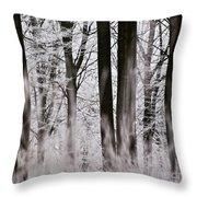 Winter Forest 1 Throw Pillow by Heiko Koehrer-Wagner