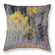 Winter Forest Landscape With Bare Trees Throw Pillow