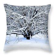 Winter Fresh Throw Pillow