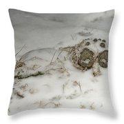 Winter Garden Guardian Throw Pillow