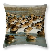 Winter Geese - 07 Throw Pillow