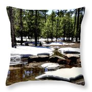 Winter Gives Way To Spring 32626 Throw Pillow