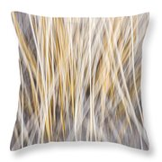 Winter Grass Abstract Throw Pillow by Elena Elisseeva