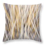 Winter Grass Abstract Throw Pillow