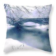 Winter Haiku Throw Pillow