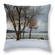 Winter Has Arrived Throw Pillow