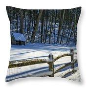 Winter Hut Throw Pillow