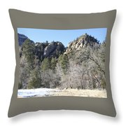 Winter In Arizona Throw Pillow