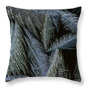 Winter In Canada- Winter Frost Throw Pillow