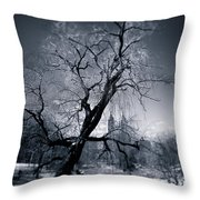 Winter In Central Park Throw Pillow