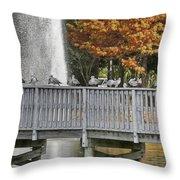 Winter In Florida Throw Pillow