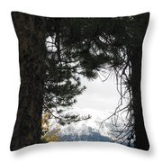 Winter In Grand Lake Co 1 Throw Pillow