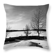 Winter In Roztocze Throw Pillow