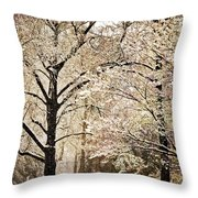 Winter In St. Louis Throw Pillow