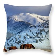 Winter In The High Desert  Throw Pillow by Jeanne  Bencich-Nations