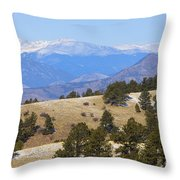 Winter In The Pike National Forest Throw Pillow
