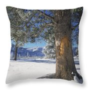 Winter In Yellowstone National Park Throw Pillow