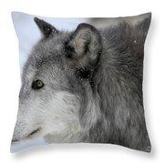 Winter Intensity Throw Pillow