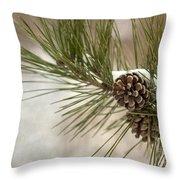 Winter Interlude Throw Pillow by Evelina Kremsdorf